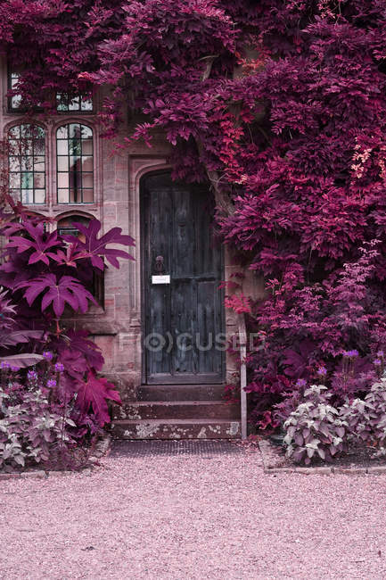 Old wooden door of stone brick house — Stock Photo