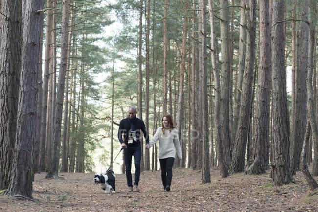 Couple avec chien sur la promenade en forêt — Photo de stock