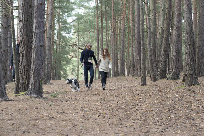 Couple out with dog on forest walk — Stock Photo