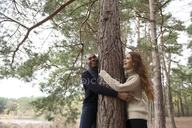 Пара обнимает дерево во время лесной прогулки — стоковое фото
