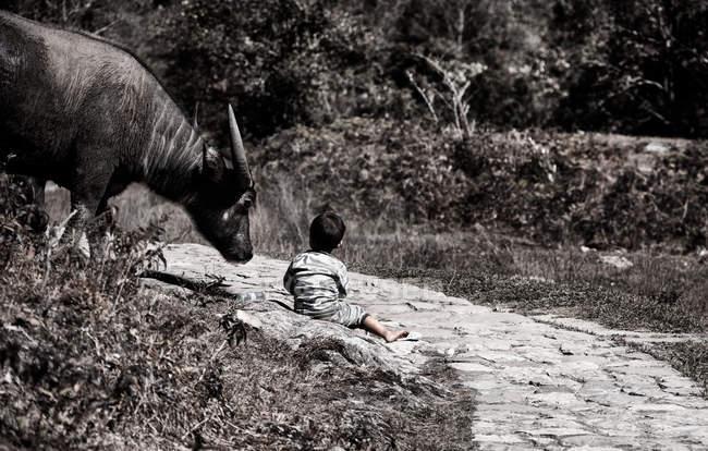 Ragazzo Vietnamito che si siede sul terreno con Toro — Foto stock