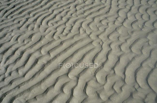 Rippled desert sand — Stock Photo