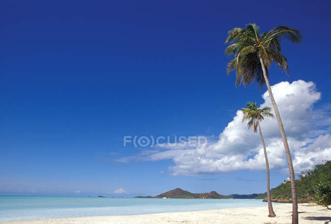 Antigua, Deep Bay beach — Fotografia de Stock