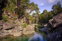 Красивая гора — стоковое фото