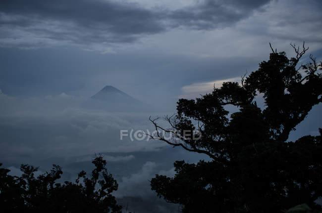 Vulkan in Wolken und Baumsilhouetten — Stockfoto