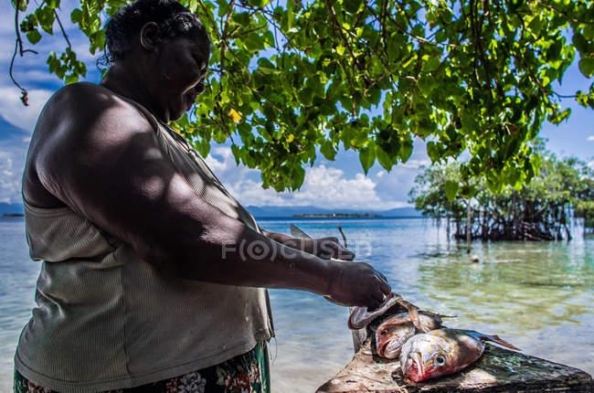 Mulher peixe evisceração — Fotografia de Stock