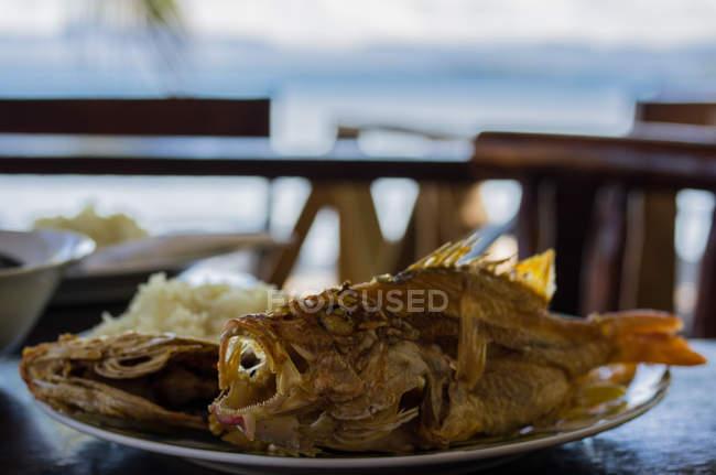 Peixe de mar num prato frito — Fotografia de Stock