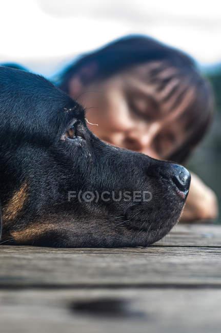 Donna che prende il sole con cane — Foto stock