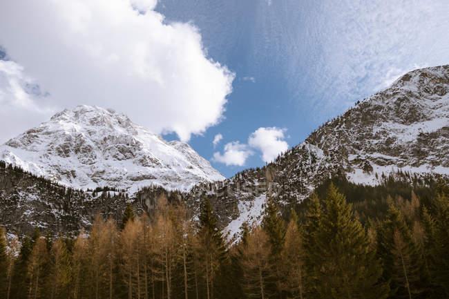 Paysage de montagne isolé — Photo de stock