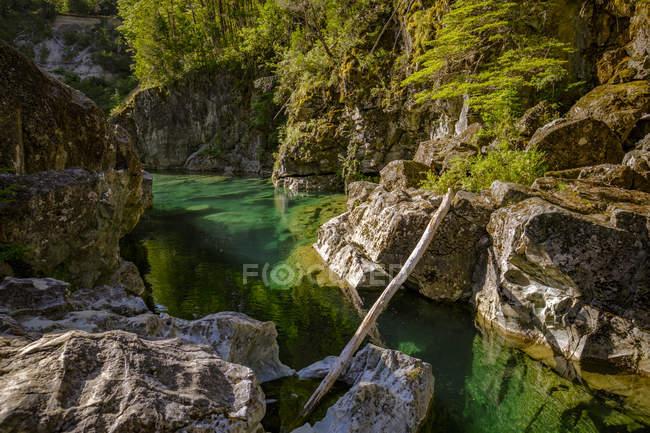 Красива гірська річка — стокове фото
