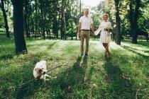 Наречений і наречена на ходити з собака — стокове фото