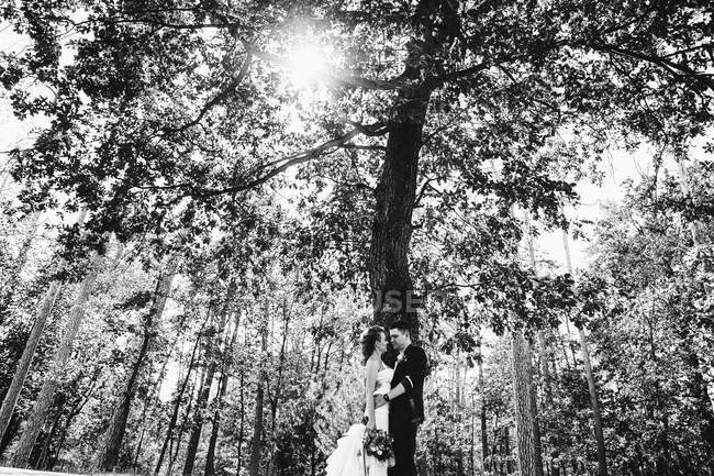 Married couple hugging each other near tree — Stock Photo