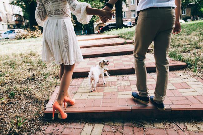 Casal andando com o cachorro na rua da cidade — Fotografia de Stock