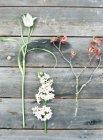 Fiori di campo su tavolo di legno — Foto stock