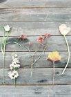 Feldblumen auf Holztisch — Stockfoto