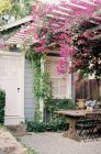 Courtyard with pink flowers — Stock Photo