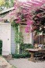 Innenhof mit rosa Blüten — Stockfoto
