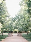 Rangées de chaises en plein air — Photo de stock