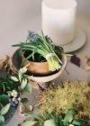 Frischen Schnittblumen und Pflanzen — Stockfoto