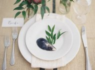 Plate decorated with mussel shell — Stock Photo