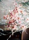 Frischen Blumenstrauß — Stockfoto