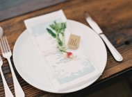 Plate decorated with herbs — Stock Photo