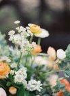 Красивая цветочная композиция — стоковое фото