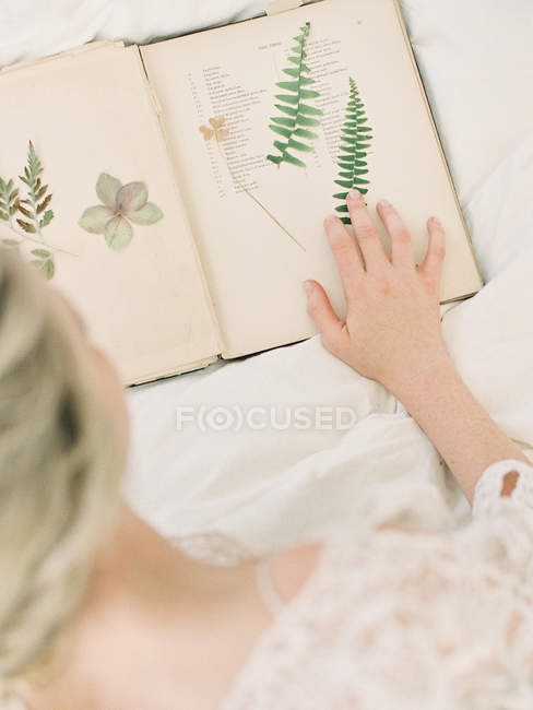 Bride touching dried fern leaves — Stock Photo