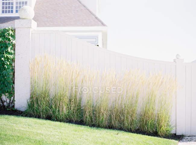 Дом и деревянный забор — стоковое фото