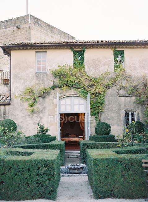 Vecchia facciata di Palazzo con vitigni di edera — Foto stock