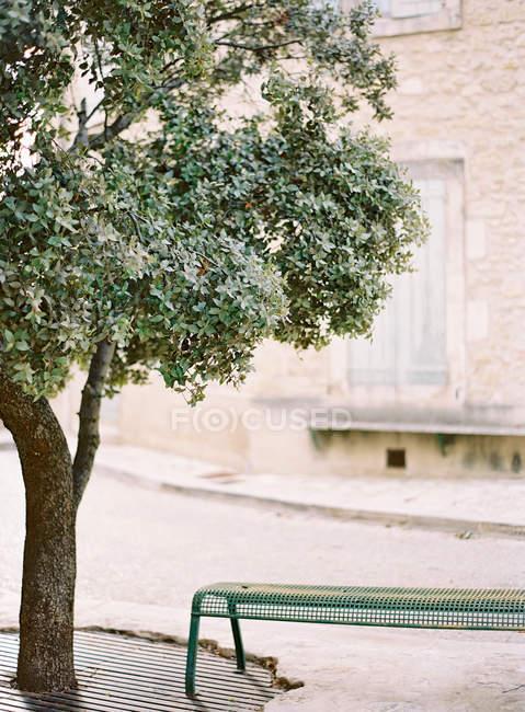 Via della città con panca e albero di alloro — Foto stock