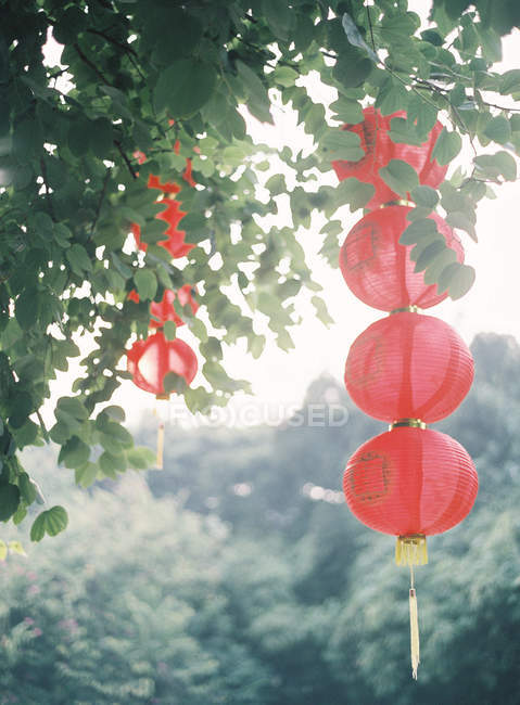 Red paper lanterns — Stock Photo