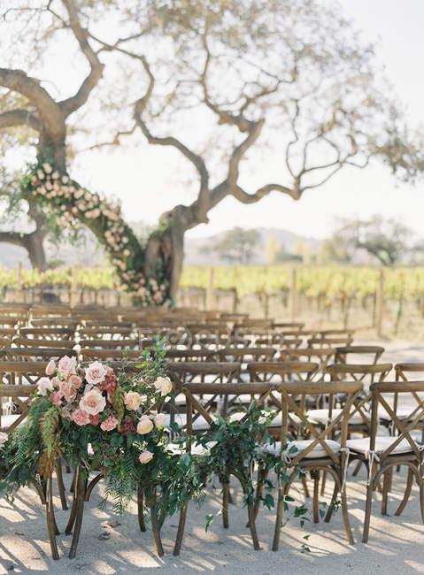 Chaises et arbre décoré de fleurs — Photo de stock