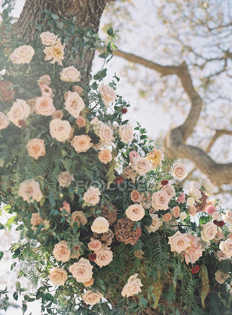 Tree decorated with flowers — Stock Photo