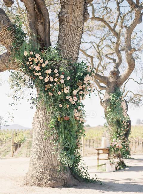 Arbres décorés de fleurs — Photo de stock
