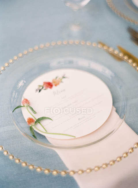 Piatto decorato con le erbe — Foto stock