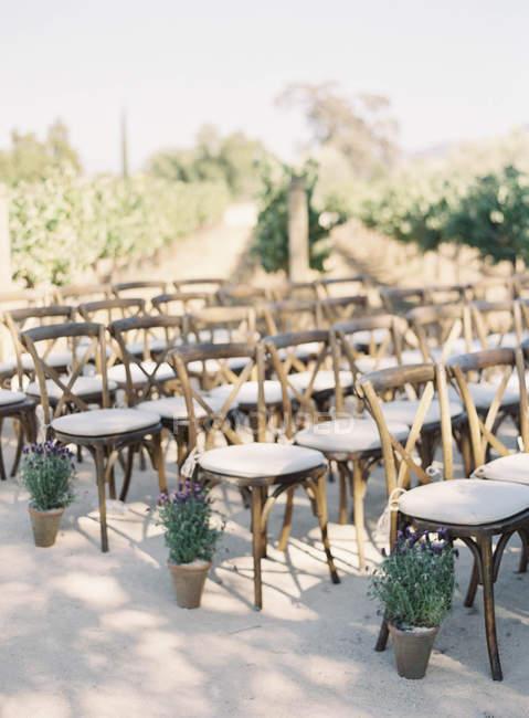 Chaises à la cérémonie de mariage — Photo de stock