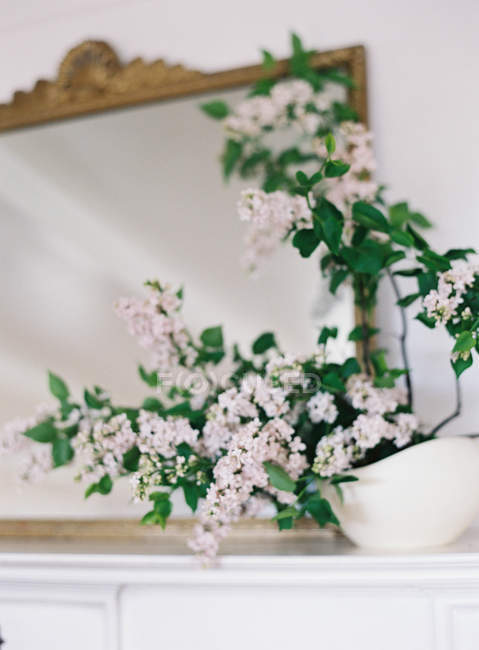 Fresh lilac flowers in vase — Stock Photo