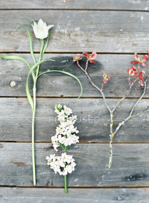Field flowers on wooden table — Stock Photo