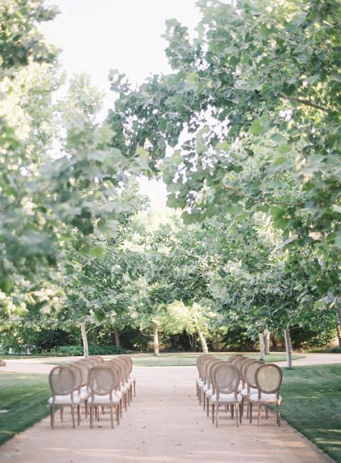 Righe di sedie all'aperto — Foto stock