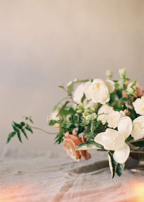 Decorative flowers and plants — Stock Photo