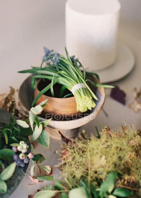 Fleurs et plantes fraîches coupées — Photo de stock