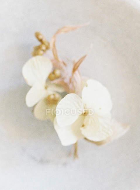 Elegant wedding boutonniere — Stock Photo