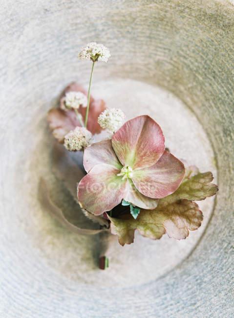 Elegant wedding flowers — Stock Photo