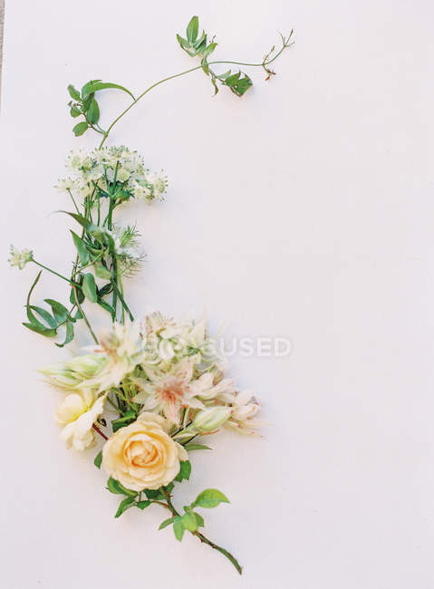 Fresh cut flowers arrangement — Stock Photo
