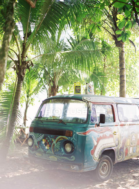 Vintage car in palm trees grove — Stock Photo