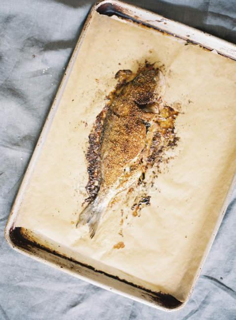 Рыба запеченная в пергаменте — стоковое фото