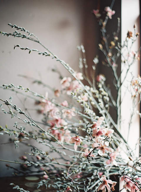 Fresh cut flowers and branches — Stock Photo