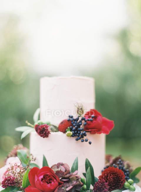Magnifique gâteau de mariage — Photo de stock