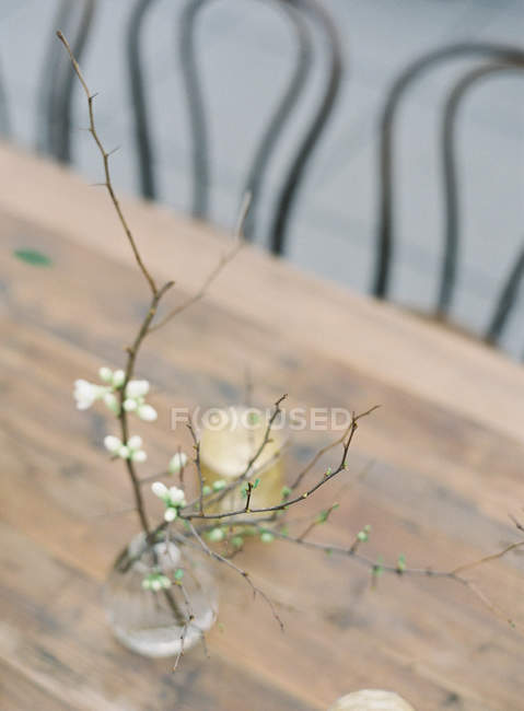 Blossoming apricot branch in vase — Stock Photo